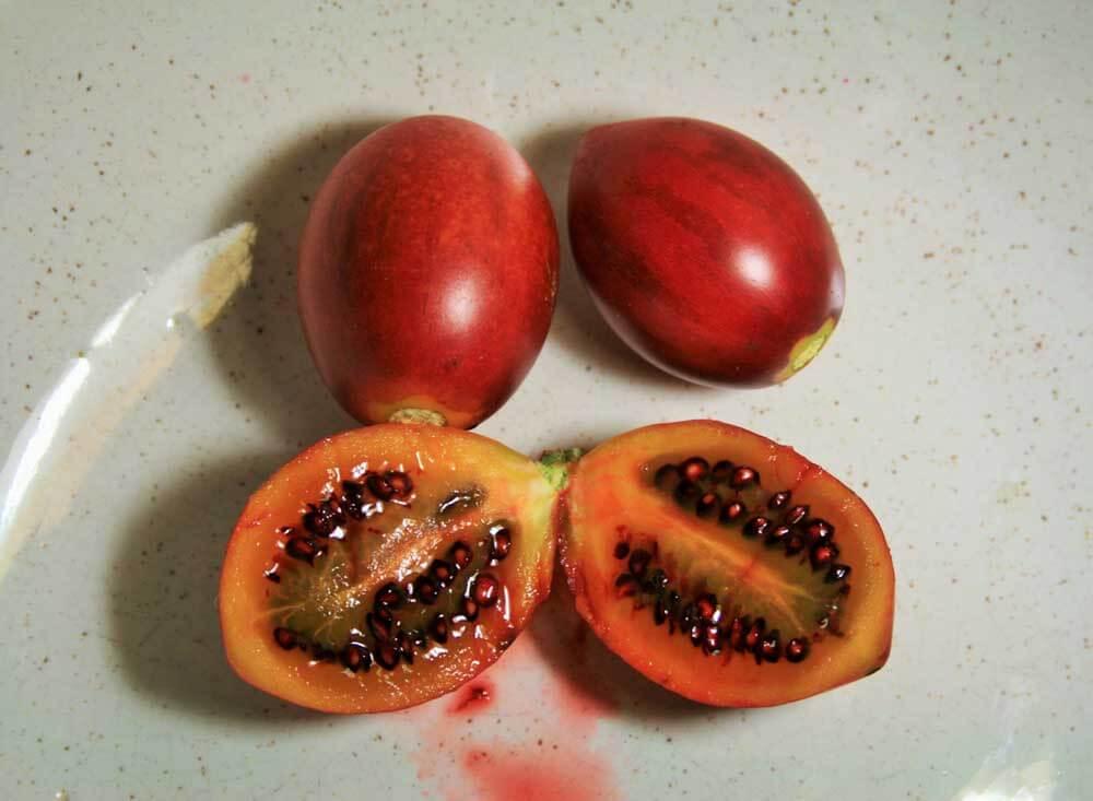 Exotic fruits   Pub Quizine